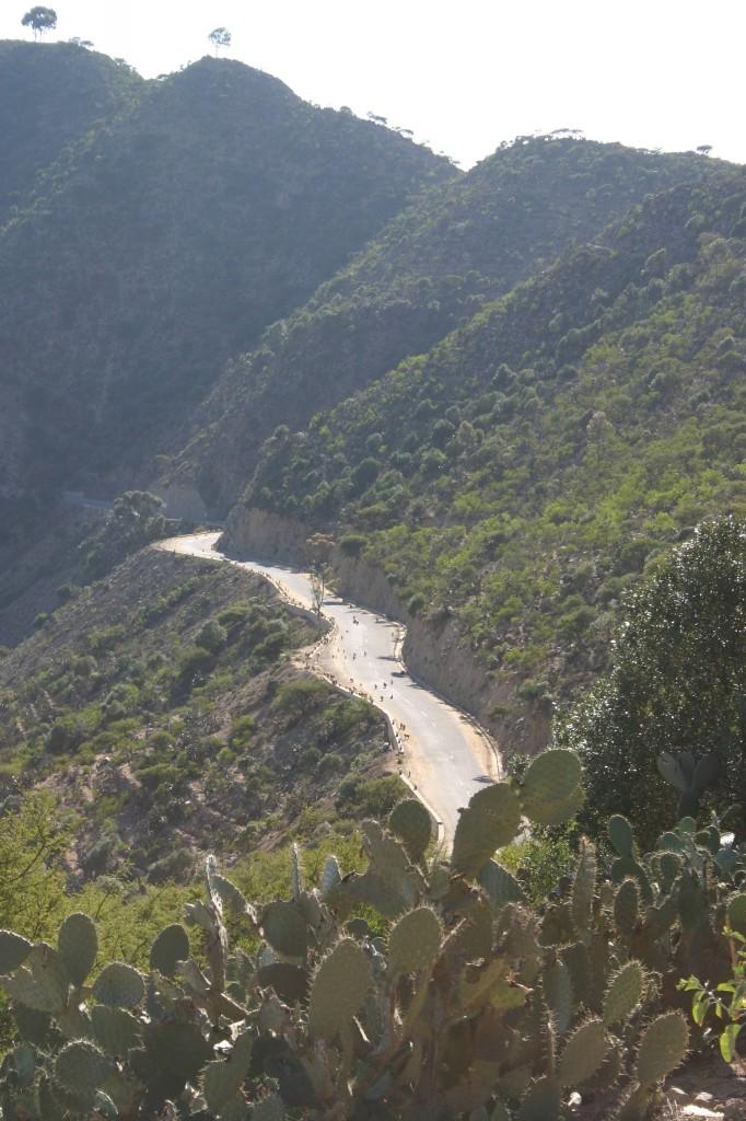 """EritreaLive, la strada che porta dall'altopiano verso la costa, """"tre staagioni in due ore"""""""